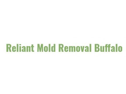 Reliant Mold Removal Buffalo