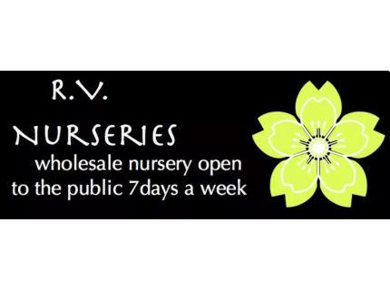 R V Nursery Wholesale
