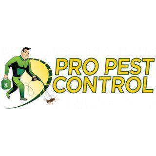 Pro Pest Control Brooklyn