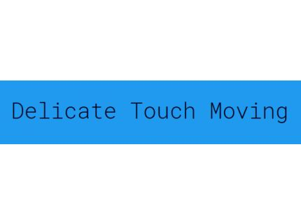 Delicate Touch Movers