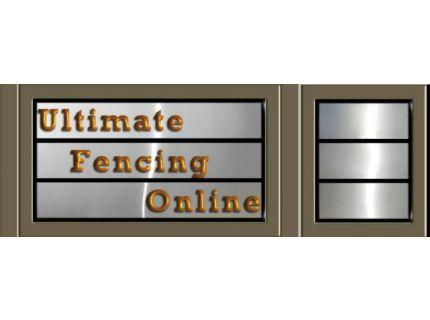 Ultimate Fencing Online
