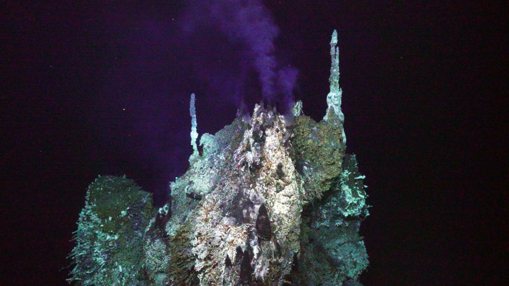 Inferno Hydrothermal Vent, 2018  Credit: UW/NSF-OOI/WHOI, V18.