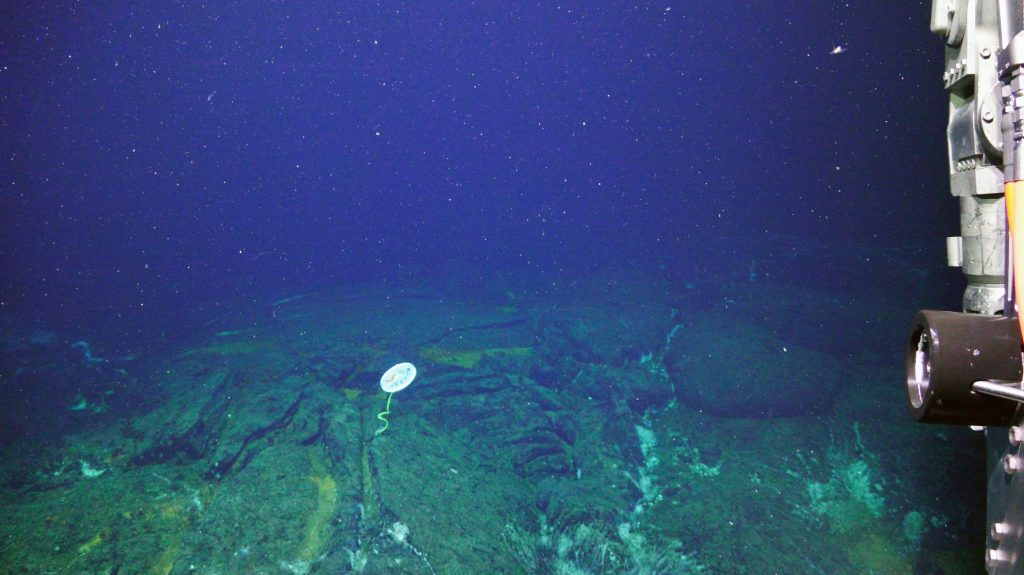 A marker on basalt at ASHES hydrothermal vent field. Credit: UW/NSF-OOI/WHOI, V18.