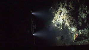 A shot of the newly installed HD camera lighting up the face of the actively venting Mushroom chimney in the ASHES hydrothermal field. Credit: UW/OOI-NSF/WHOI; V17.