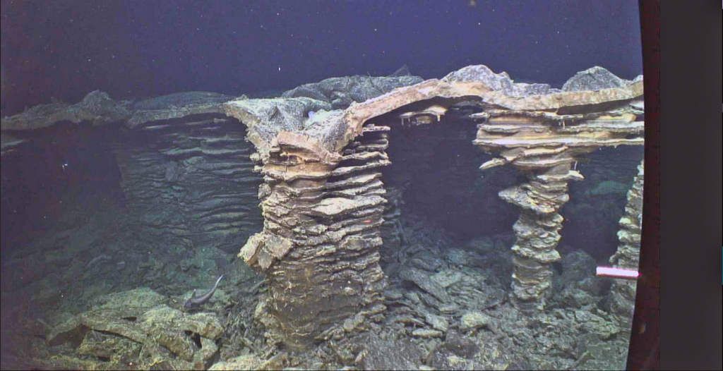Columns in a collapsed area that once hosted a lava lake are reminiscent of an ancient city.  Rings mark lowering of the lake as lava drained out. Fossilized drips of lava are preserved hanging from the ceiling. A rattail fish explores the site. This is part of the 2011 eruption at Axial. Credit: UW/OO-NSF/WHOI; J2-980; V17.