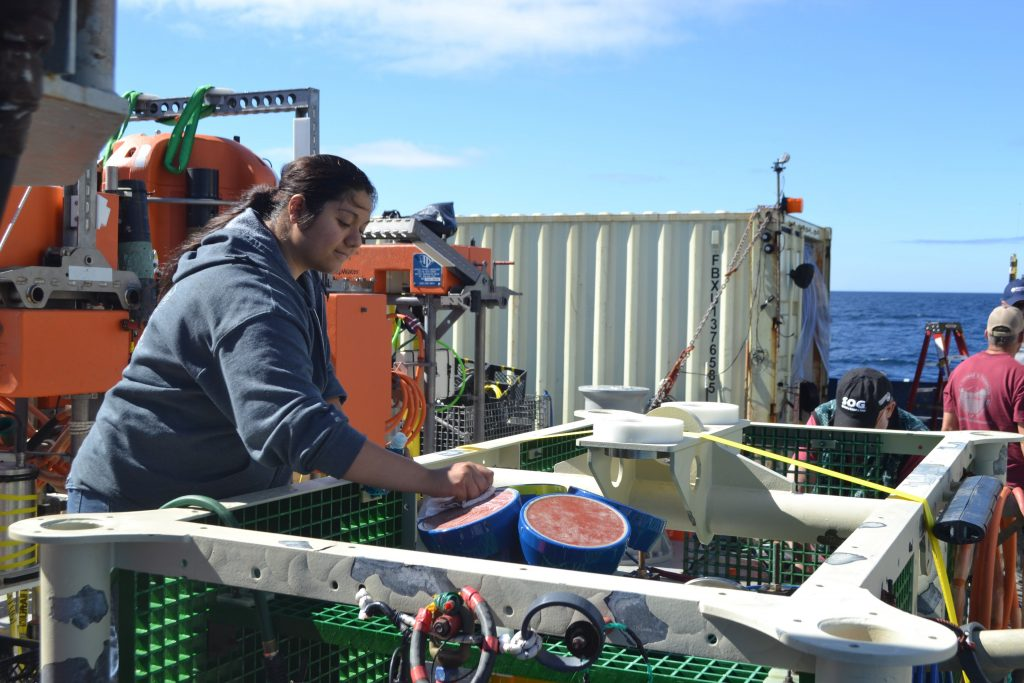 Katie Gonzalez, from Clallam Bay, will be a freshman at the University of Washington Fall 2017 where she will study Oceanography and work with Deb Kelley. Here, she is cleaning an Acoustic Doppler Current Profiler recovered from 2900 m water depth at the Slope Base site. Credit: M. Elend, University of Washington.