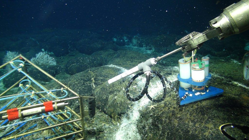 A new osmotic fluid sampler is about to be installed in a diffuse flow site hosting a 3D temperature array in the ASHES Hydrothermal Field on the summit of Axial Seamount. Each year, as part of the annual operations and maintenance cruise, a sampler is recovered and a new one installed. Onshore analyses of the entrapped fluids provide insights on the evolution of fluid chemistry in time, in response to changing environmental conditions e.g. earthquakes, temperature, microbial utilization of gases and different elements. Credit: UW/NSF-OOI/WHOI; V16.
