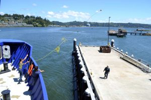 An AB on the R/V Sikuliaq throws a line ashore to pull the main docking line to the dock in Newport Oregon. Credit: M. Elend, University of Washington