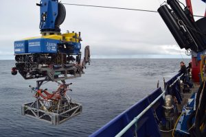 The ROV Jason takes a digital still camera in their elevator latched beneath the vehicle to the seafloor at Southern Hydrate Ridge. Credit: M. Elend, University of Washington, V16.