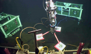 The LJ03A-2016 junction box hosting a variety of instruments to investigate water-column properties was successfully installed at the base of Axial Seamount. An instrument package hosting a CTD, dissolved oxygen, and absorption spectrophotometer is held in the manipulator of the ROV Jason. Credit. UW/OOI-NSF/Jason.