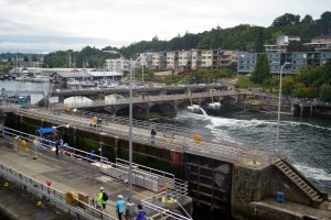 Spillways on the south side of the Hiram locks as viewed from the R/V Sikuliaq at the Hiram Locks. Credit: M. Elend, University of Washington, V16.