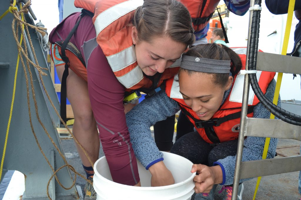 UW undergranduate students, Jessie and Khadijah, examine velella velella jellyfish during Leg 1 of the VISION'15 expedition. Credit: Mitch Elend, University of Washington, V15.