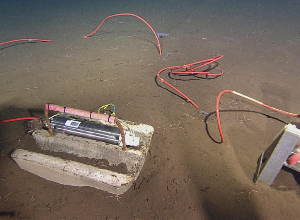 This seafloor pressure sensor was deployed at Axial Base in 2014, and is connected to the MJ03A J-Box.Photo Credit: NSF-OOI/UW/CSSF, Dive 1739, V14.