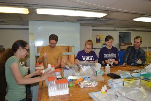 University of Washington, College of the Environment undergraduate students help Rick Berg, a graduate student in the School of Oceanography, sample fluids collected for a year at an active methane seep at Southern Hydrate Ridge. Photo Credit. Mitch Elend, University of Washington, V14.