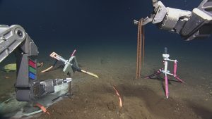 "ROPOS uses rebar ""staples"" to secure the hydrophone cable into the seafloor at the Axial Base site. The hydrophone is mounted on the pink tripod on the right side of the frame.  	Photo Credit: NSF-OOI/UW/CSSF, Dive 1739, V14"