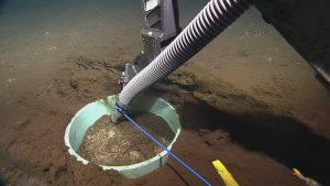 ROPOS using a suction tube to vacuum out the caisson for the broadband seismometer at Axial Base  	Photo Credit: NSF-OOI/UW/CSSF, Dive 1739, V14