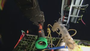 The connectors for the deep profiler mooring and wire AXVMW4, with a photobomb from a Peniagone sea cucumber.  	Photo Credit: NSF-OOI/UW/CSSF, Dive 1739, V14