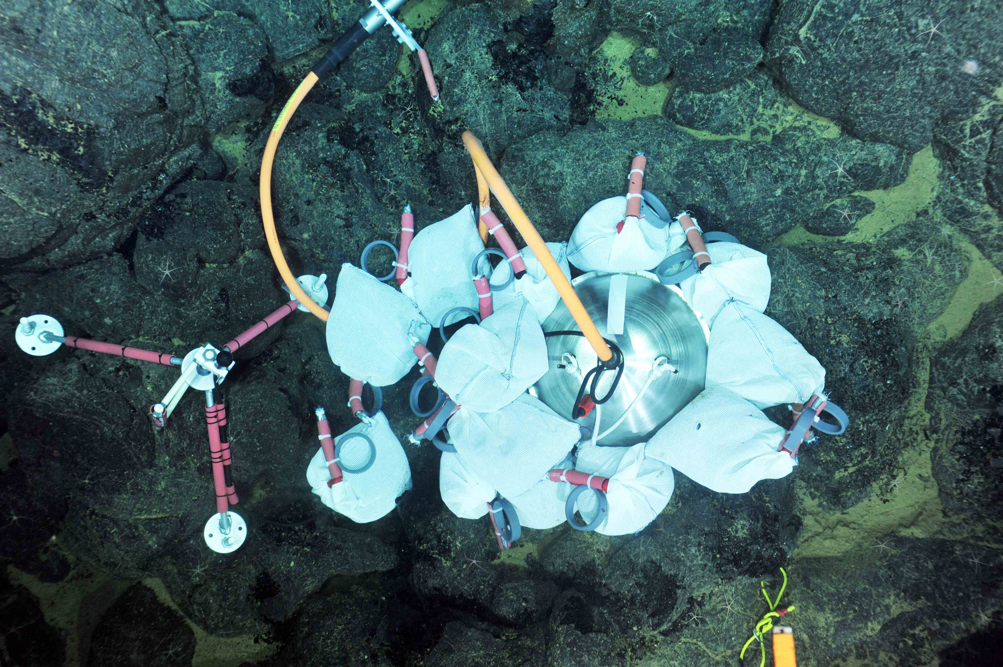 A broadband seismometer installed at Eastern Caldera is coupled to a low-frequency hydrohone. Photo credit: NSF-OOI/UW/CSSF; Dive R1722; V14.