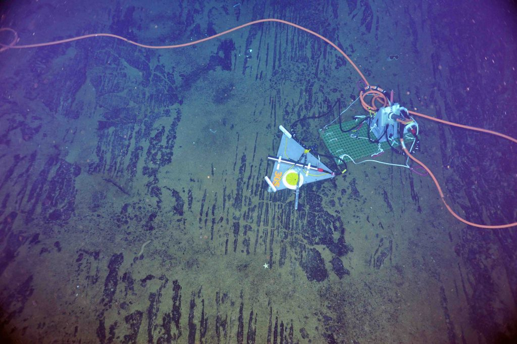 A short-period seismometer was installed and connected to a junction box in the International District hydrothermal field at the summit of Axial Seamount. Photo credit: NSF-OOI/UW/CSSF; Dive R1719; V14.