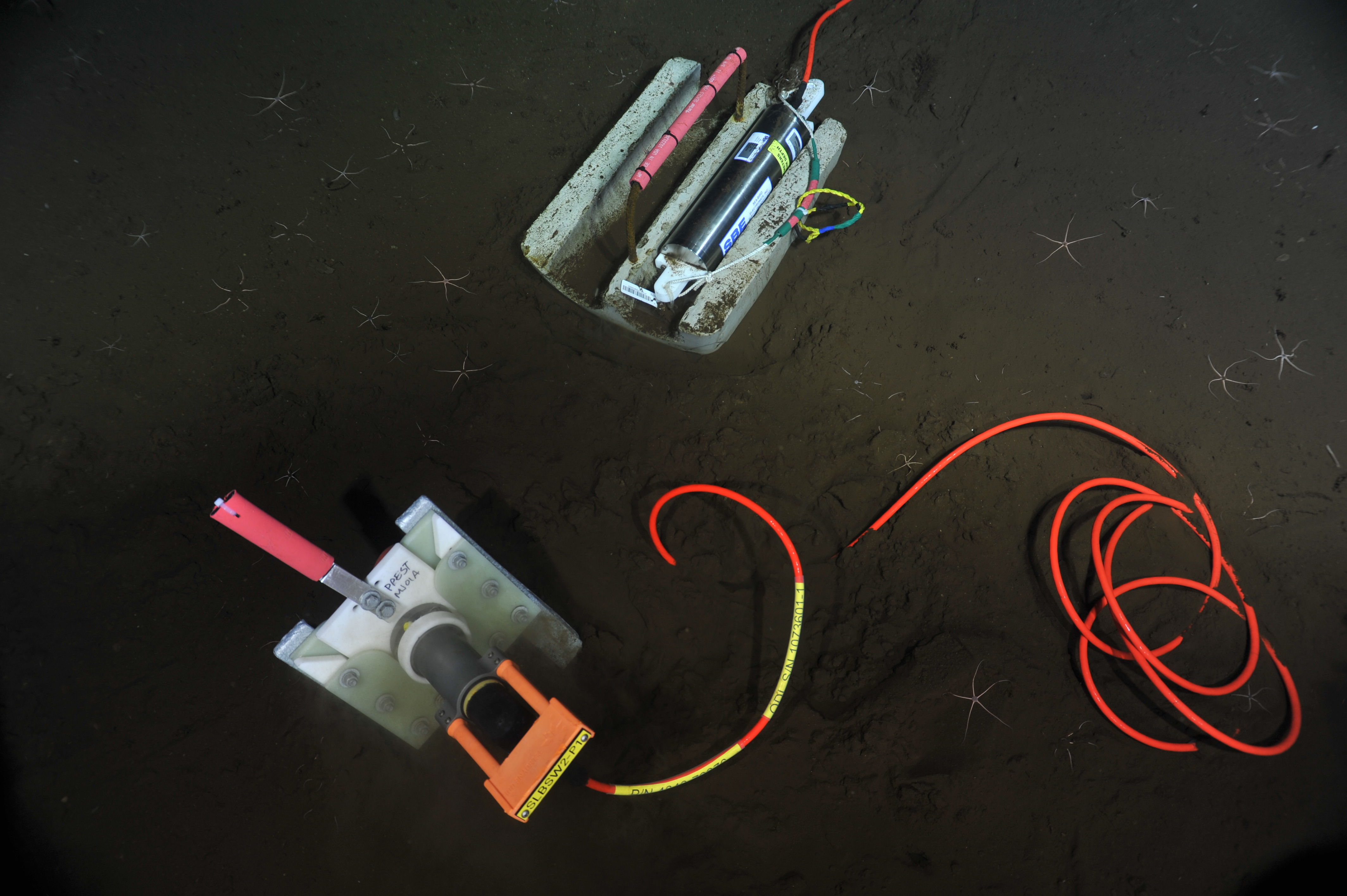 A pressure sensor deployed on the seafloor is powered up for the first time through fiber optic cables, sending data live to the ship >8000 feet above.    Photo credit: NSF-OOI/UW/CSSF
