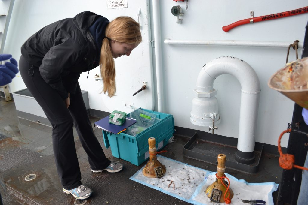 Caitlin looks at a microbial experiment brought up from hydrothermal diffuse flow site at the base of the chimney called Mushroom: water depth ~ 5000 ft. Photo Credit: Mitch Elend, University of Washington.