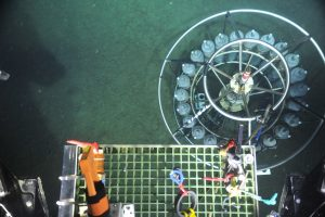 The remotely operated vehicle ROPOS used a snap hook connected to a line on its underbelly, hooked into the frame of the CTD for recovery to the surface. The CTD wire failed as the sensor-sampling package was being recovered onto the deck of the Thompon. Luckily, after its >9000 free descent to the seafloor, it landed upright in the soft sediment. Photo credit: NSF-OOI/UW/CSSF.