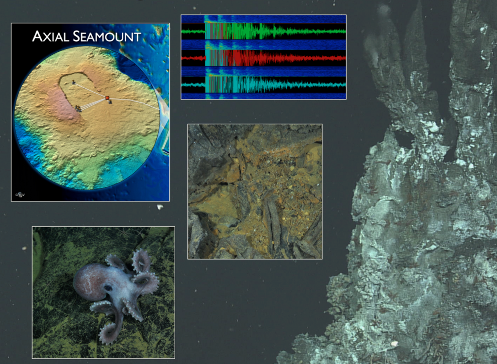 As her student project, Marisa Gedney is developing an outreach-oriented web site filled with information on Axial Seamount.