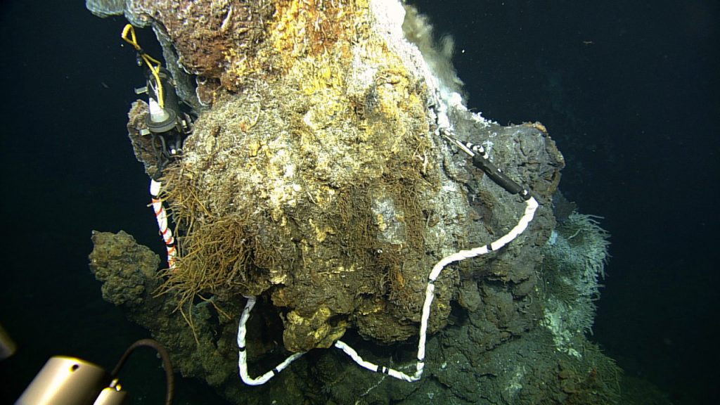 """This resistivity-temperature probe was deployed in the 270°C hydrothermal vent called 'Escargot' at the summit of Axial Volcano in 2013. Resistivity is an analoge for chlorinity or """"saltiness' of the hydrothermal fluids. Boiling is common in these venting environments, governing gas concentrations, metal deposition, and perhaps life. A cabled version will be installed in 2014 providing real-time 24/7 data.  ROPOS dive #1618, VISIONS '13, Leg 3. Photo credit: NSF-OOI/UW/CSSF."""