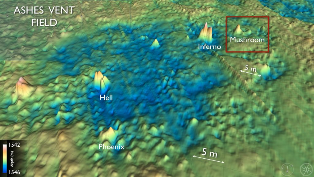 This high resolution bathymetric map of the ASHES hydrothermal field shows the location of small, ~ 4 m tall, actively venting sulfide structures. The field is located near the steep western caldera wall. The field is likely fed by fluids circulating up along faults associated with this wall.