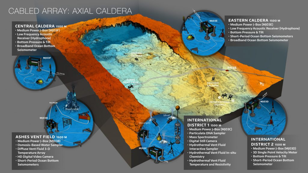 Axial Seamount is the most magmatically robust volcano on the Juan de Fuca Ridge spreading center. It hosts numerous active hydrothermal fields and abundant sites of diffuse flow.