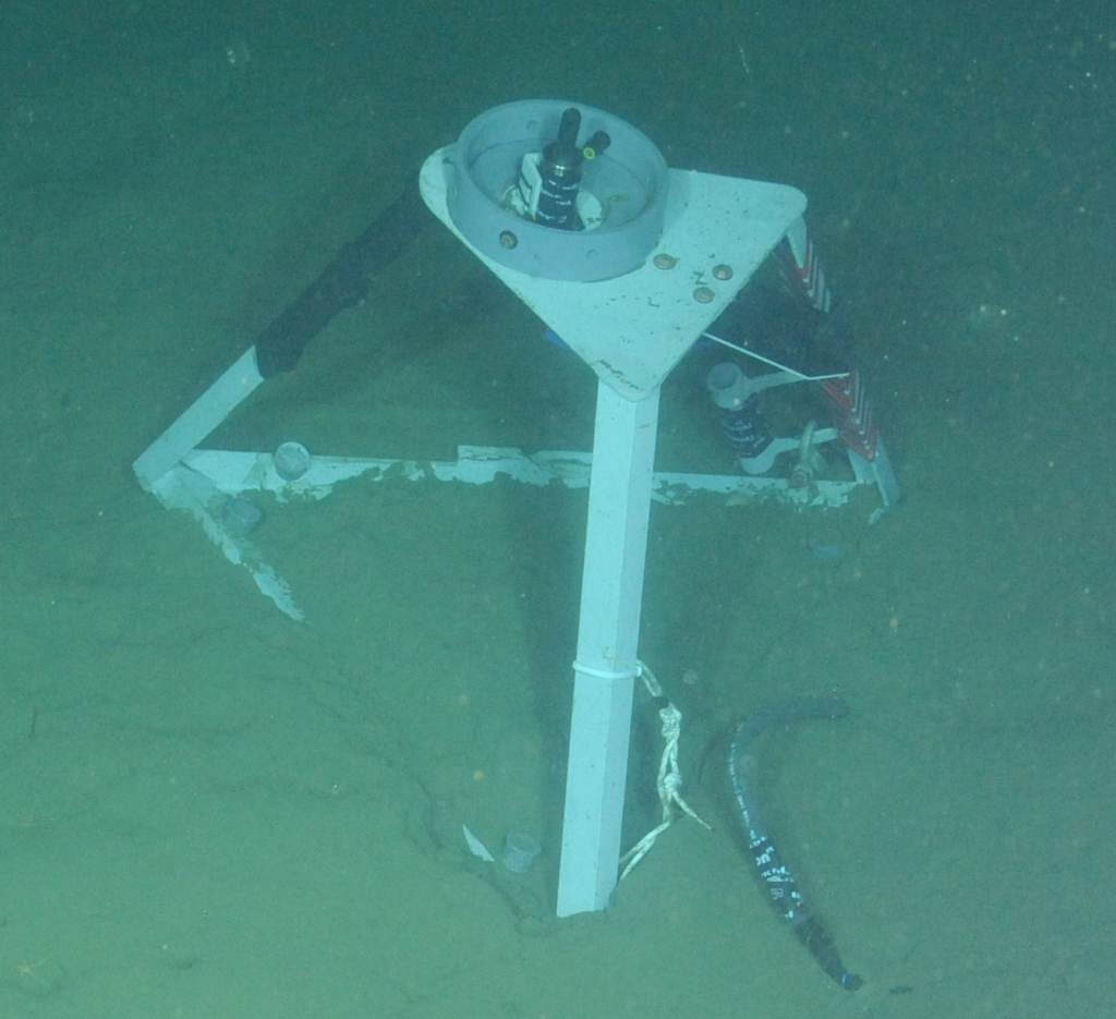 An icListen Broadband Hydrophone tripod deployed at the Endurance Offshore location (600m). Photo credit: NSF-OOI/UW/CSSF; Dive R1747; V14.