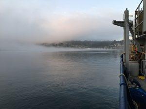 Fog_NewportV19