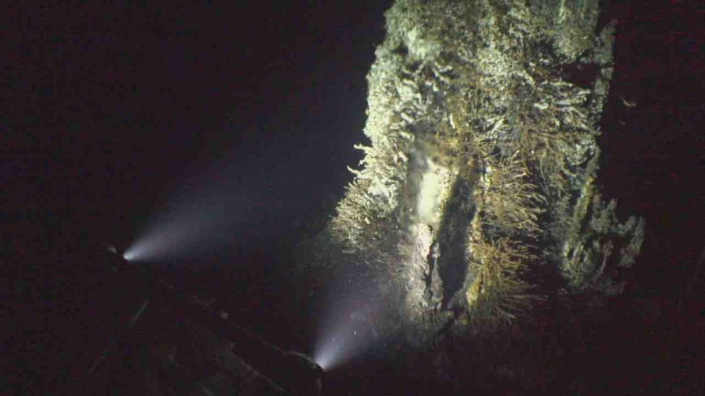 The new HD camera installed at the Mushroom vent undergoing its first test - lights on. Credit: UW/NSF-OOI/WHOI; V19.