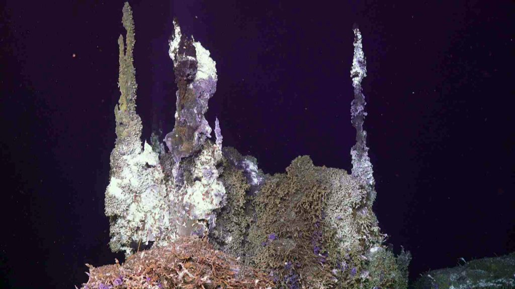 "'Chimlets"" atop the hydrothermal edifice called Inferno vent 300°C fluids into the near-freezing surrounding ocean water. Credit: UW/NSF-OOI/WHOI, V19."