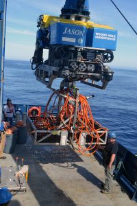 During Jason dive J2-1150, a 120 m extension cable was recovered following its replacement. It provides power and communications to the Shallow Profiler Mooring. Credit: M. Elend, University of Washington.