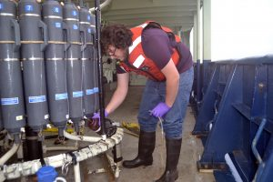 UW undergraduate student, Hayden Amidon, samples fluids taken from 8500 ft beneath the oceans' surface. Credit: M. Elend, University of Washington; V19.