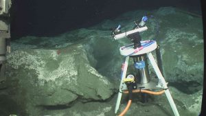 Jason looking at the newly deployed MARUM 4K camera, which is aimed at a crevice with active methane bubble activity on Southern Hydrate Ridge (770m). Credit: UW/NSF-OOI/WHOI, V19