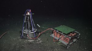 """The Oregon State/Harvard benthic microbial fuel cell (CH4-BMFC) sitting on a white bacterial mat at Southern Hydrate Ridge (770m). The anode is in the sediment, and the cathode is the black """"feather boa"""" on the vertical component. Credit: UW/NSF-OOI/WHOI, V19"""