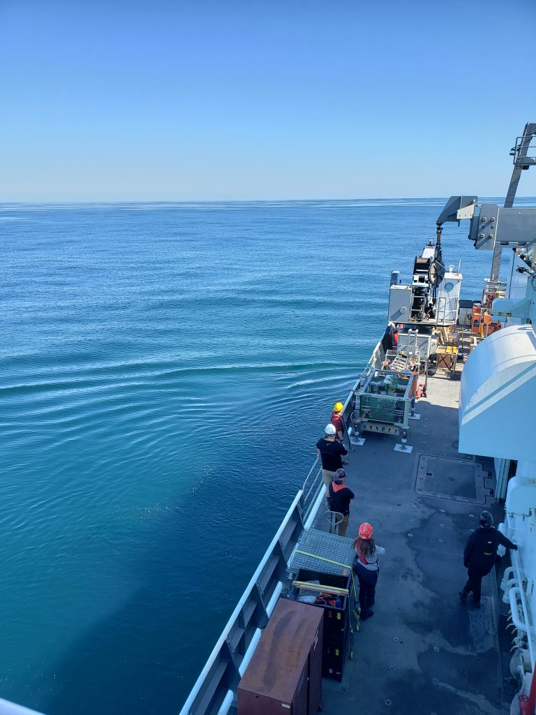 During the first few days of the VISIONS'20 cruise, the NE Pacific looked like a calm lake - beautiful it was for transiting and working. Credit: K. Gonzalez, University of Washington.