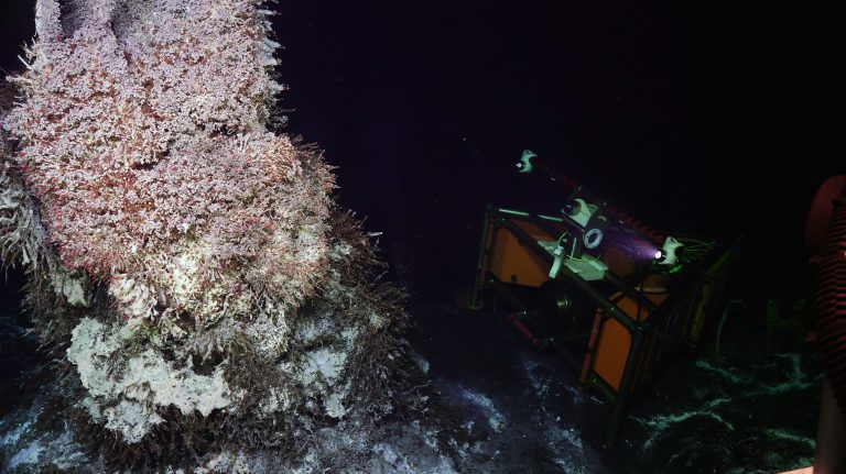 The cabled high definition camera reinstalled at the base of the Mushroom vent during VISIONS'20. Credit: UW/NSF-OOI/WHOI.20.