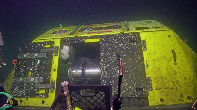 If you look closely within the Benthis Experiment Platform, you will see a cod eyeing you. Credit: UW/NSF-OOI/WHOI. V20.