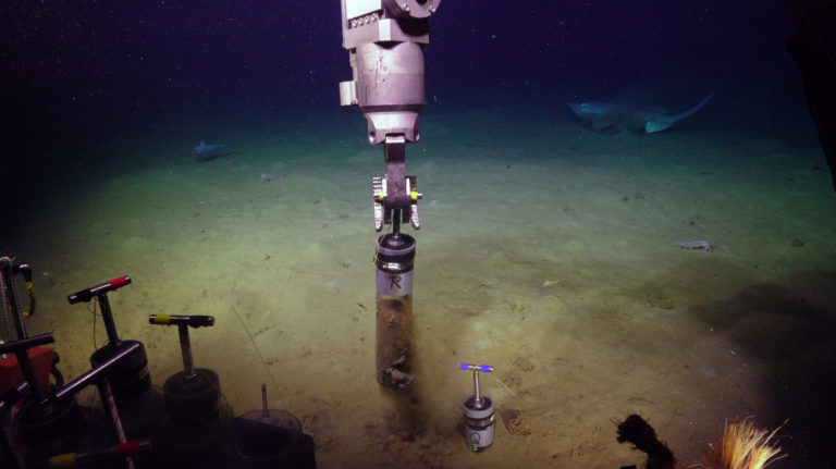 The ROV Jason takes a push core at 2900 m water depth at the Slope Base site. A scate investigates the operation. Credit: UW/NSF-OOI/WHOI, V21.