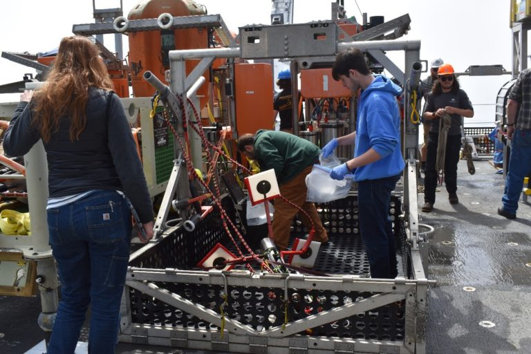 One of my favorite duties from the first leg of the cruise was learning how to prepare SeaCube instruments for long term storage after removing them from the BioBox that carried them from the seafloor. Photo credit: M. Elend, University of Washington, V21.