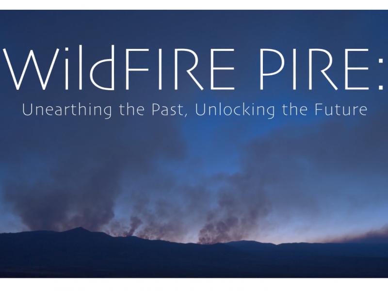 Wildf FIREPIRE podcast