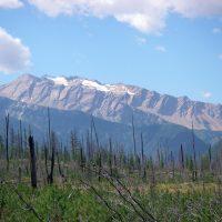 Great Bear Wilderness