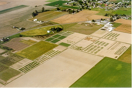 Aerial image of the NWREC and adjoining research plots.