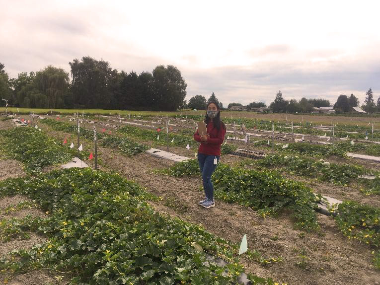 Woman holding clipboard stands between rows of cantaloupe plants.