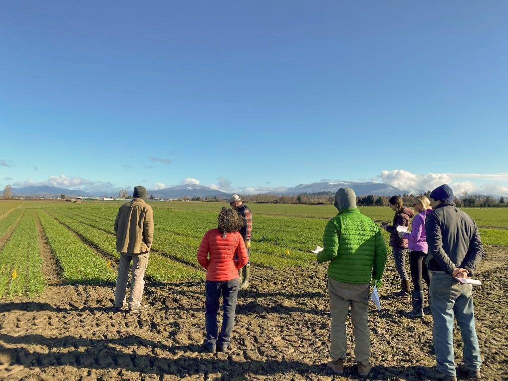 Seven people in winter jackets look at a wheat field.