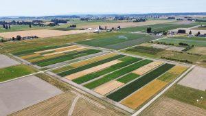 Aerial photo of farmland.