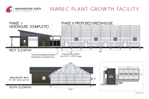 Conceptual architectural elevations of Wiley headhouse and Phase II greenhouse.